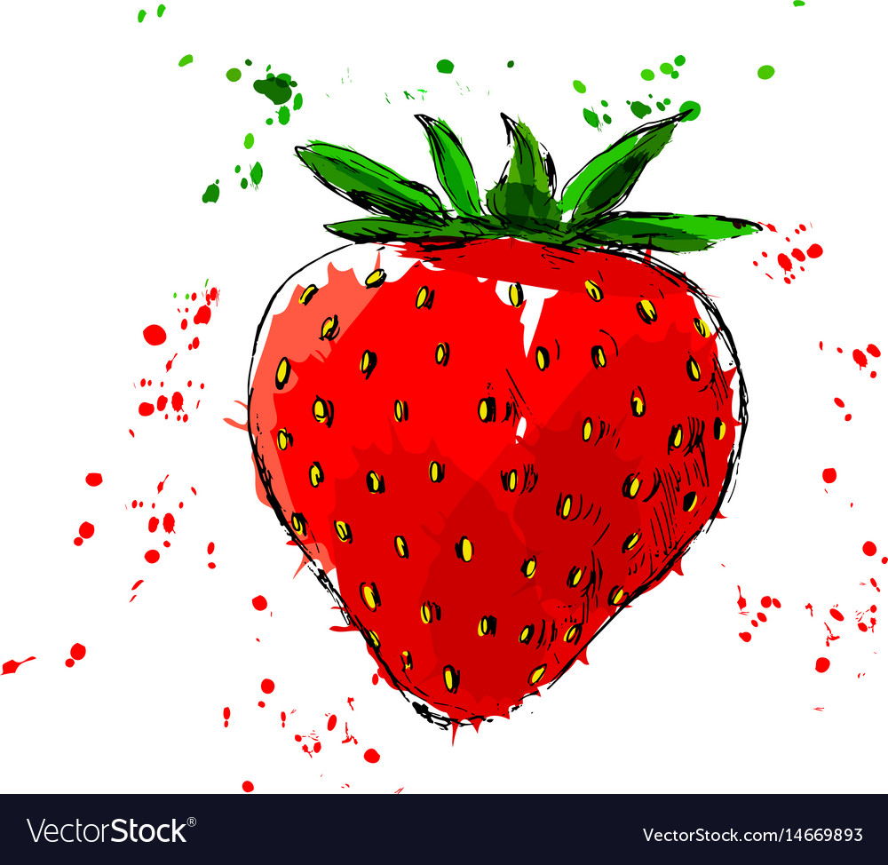 Colored hand sketch of strawberry