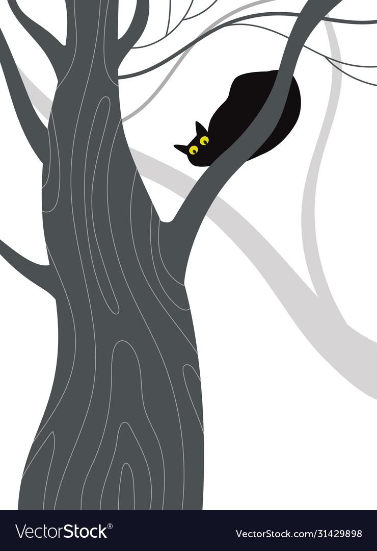 Black cat on a tree