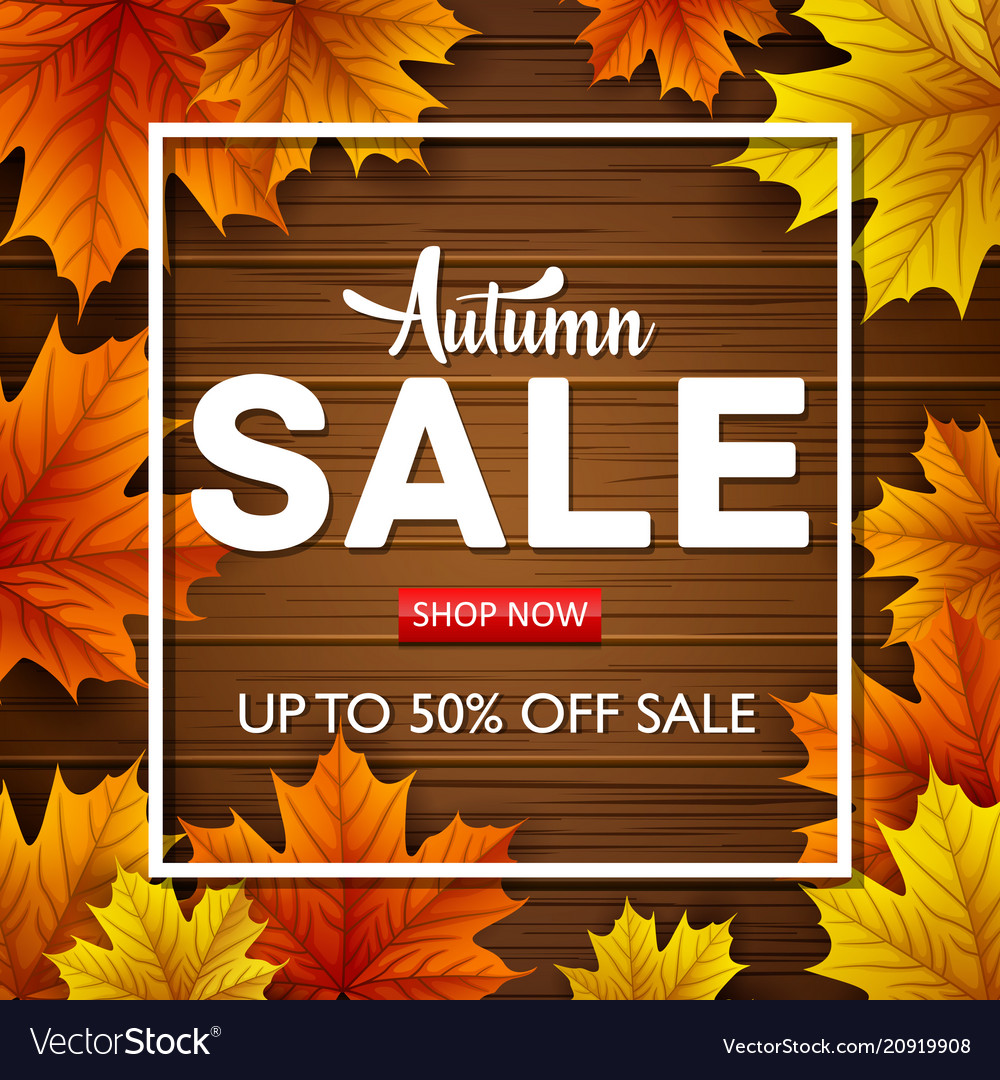 Autumn sale background with autumn leaves