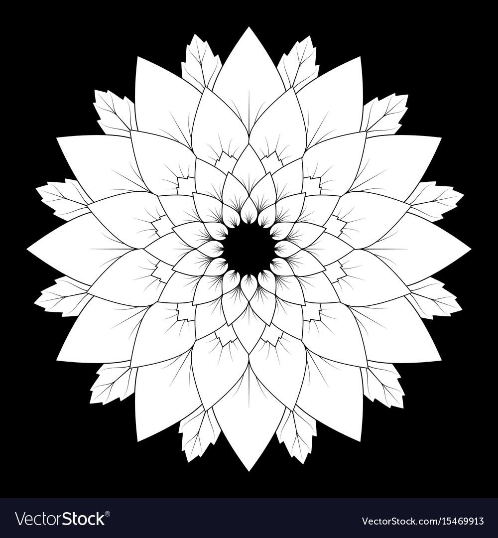 Black and white round floral natural mandala