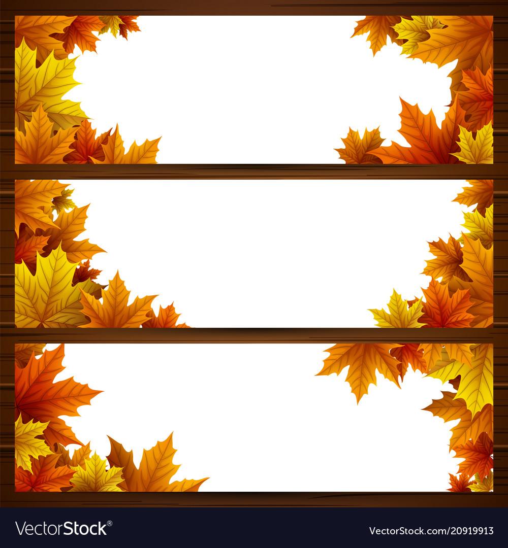 Set of autumn leaves banner