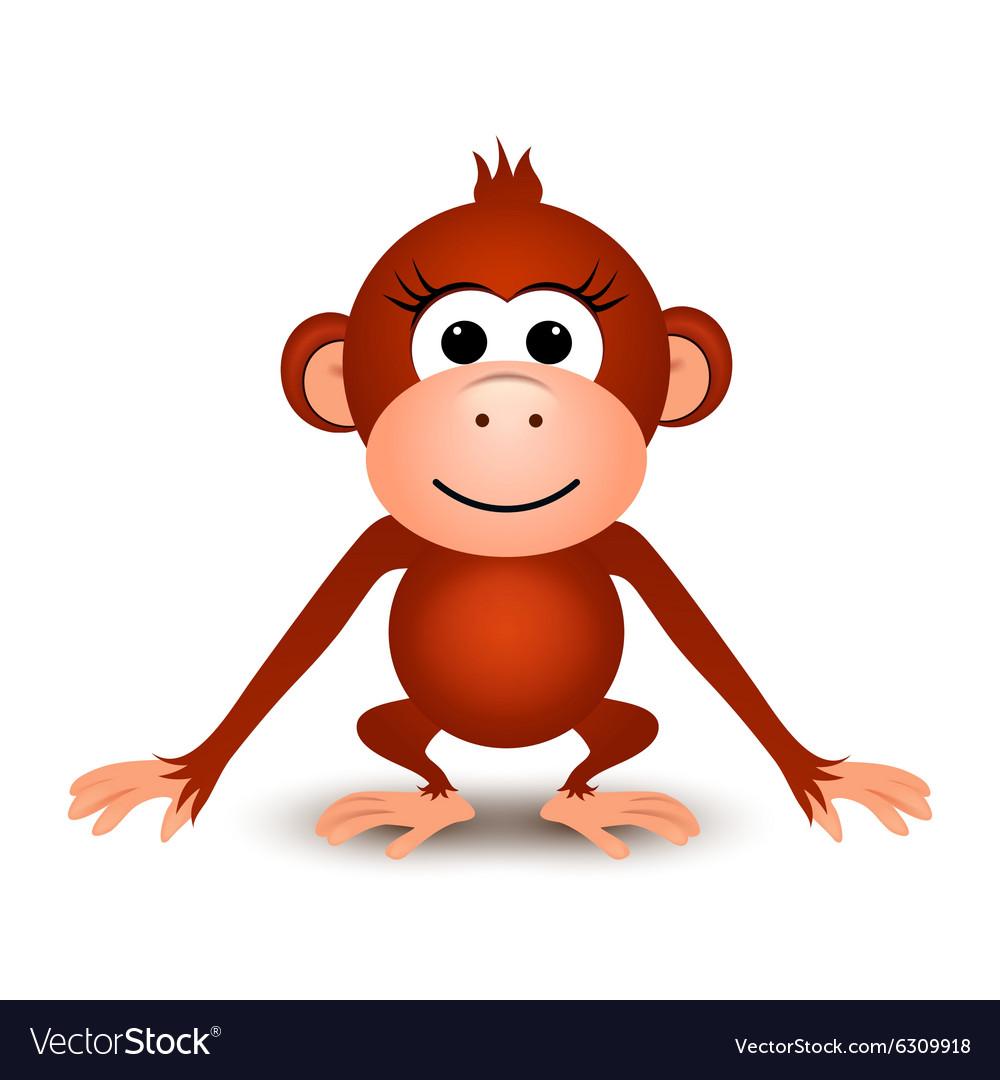 Cartoon cute monkey on a white background