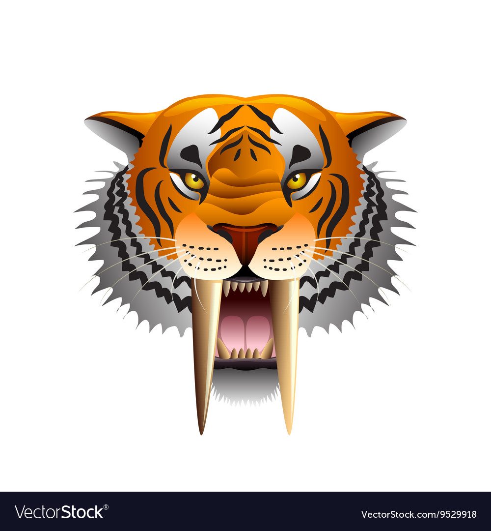 Saber-toothed tiger face isolated on white vector image