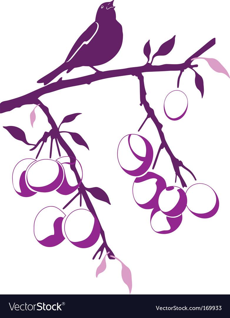 Bird on a plum branch