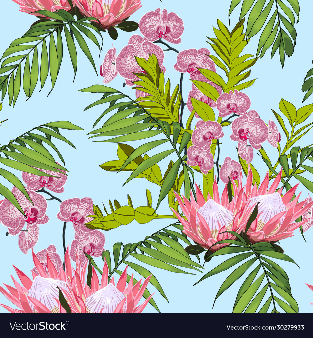 Nature protea seamless pattern