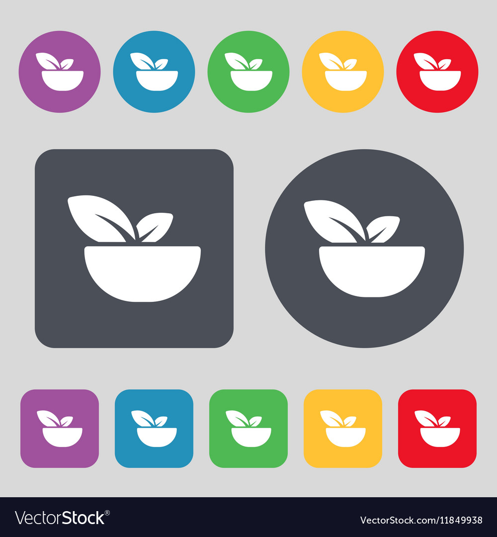Organic food icon sign A set of 12 colored buttons