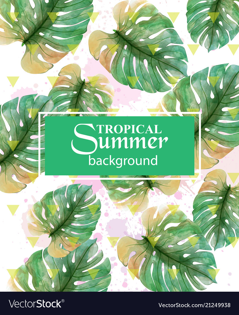 Summer tropic palm leaves exotic hot