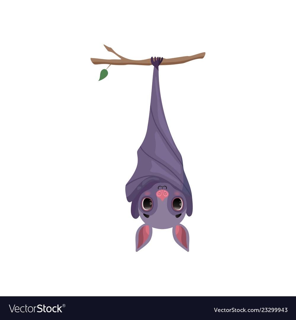 этой рисунок летучих мышей на дереве вверх ногами желе