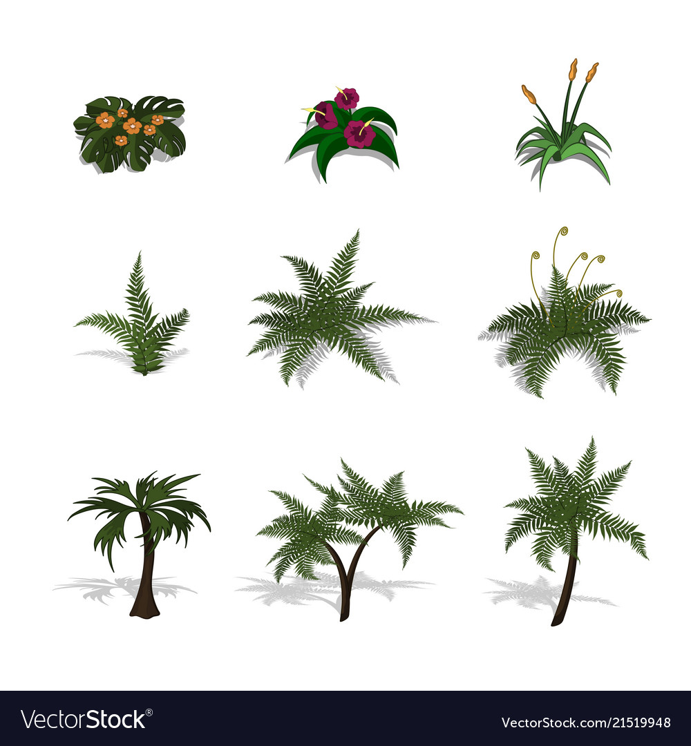 Set of plants in isometric style
