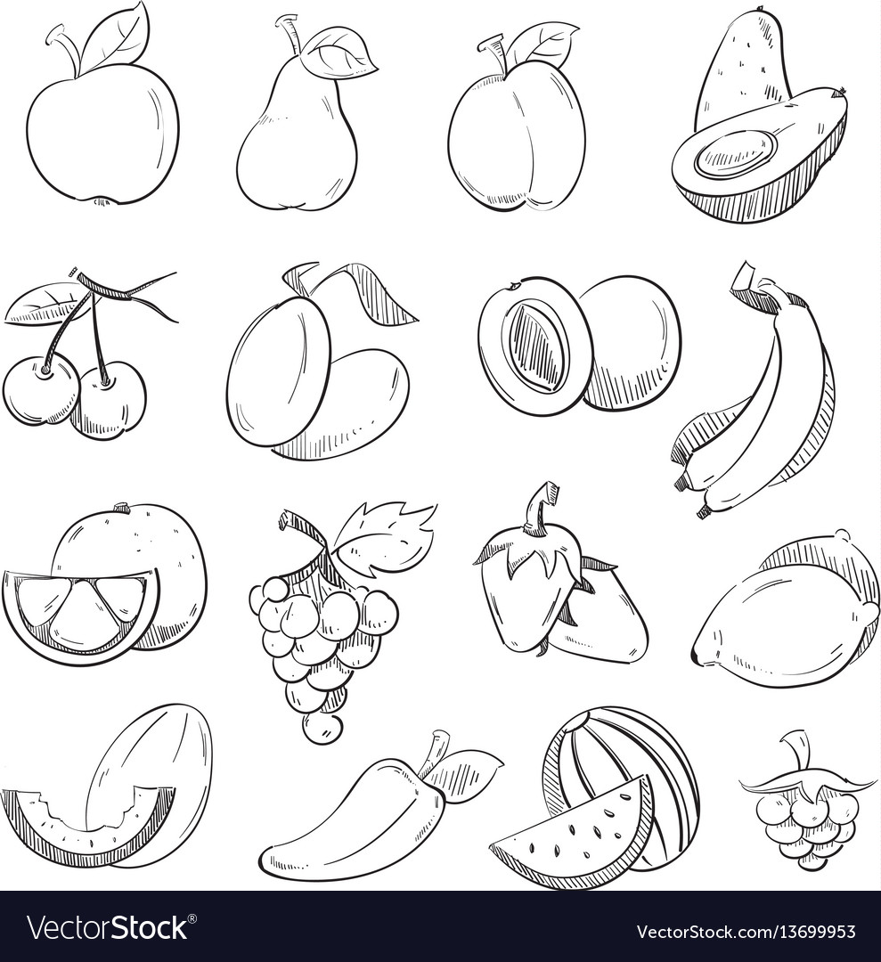 Sketch doodle hand drawn fresh and juicy fruits