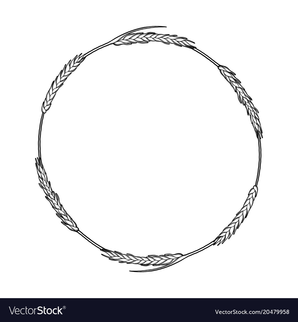 Graphic malt wreath vector image