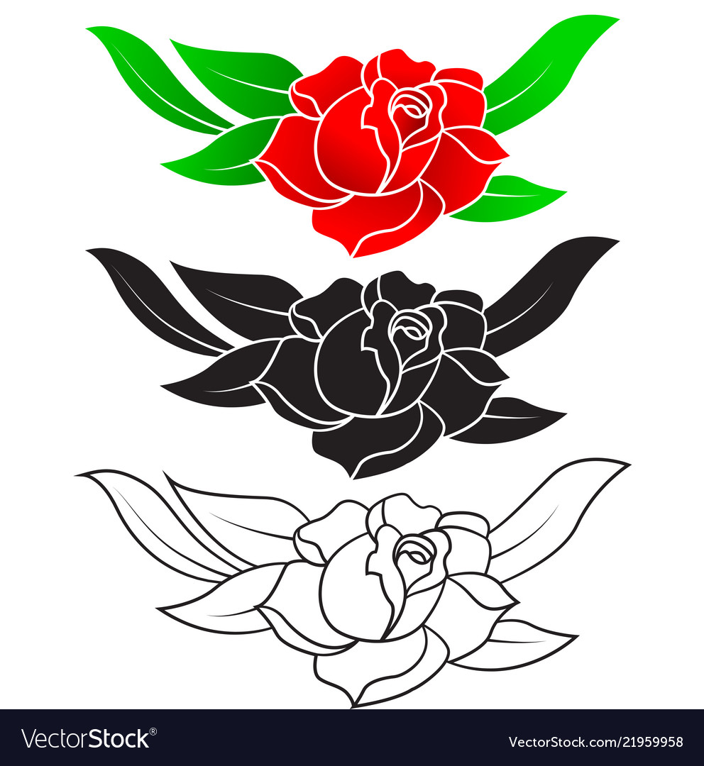 Three styles of rose