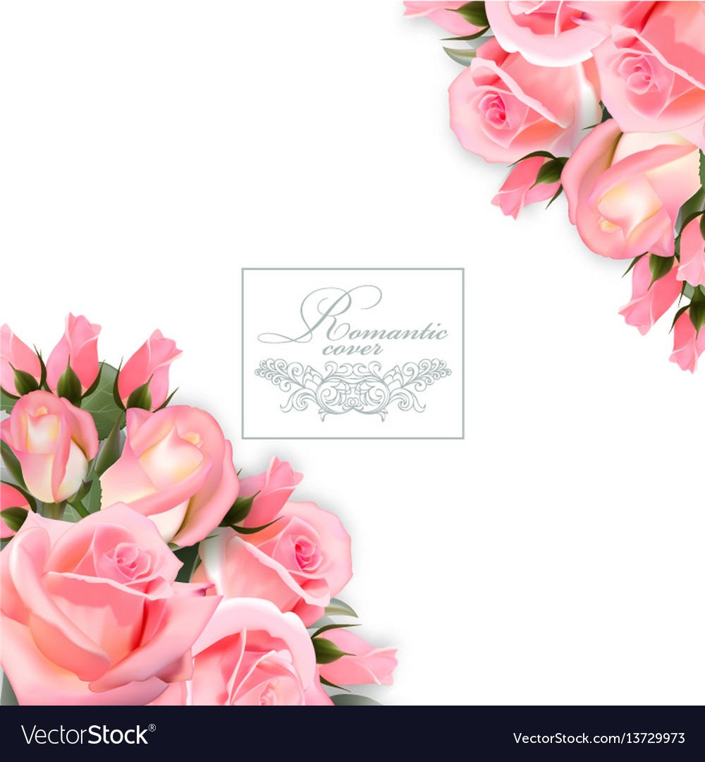 Background with pink roses flowers and