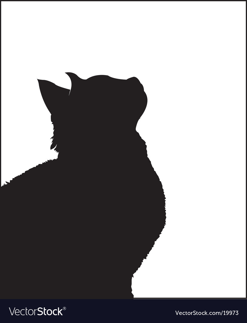 Cat profile vector image