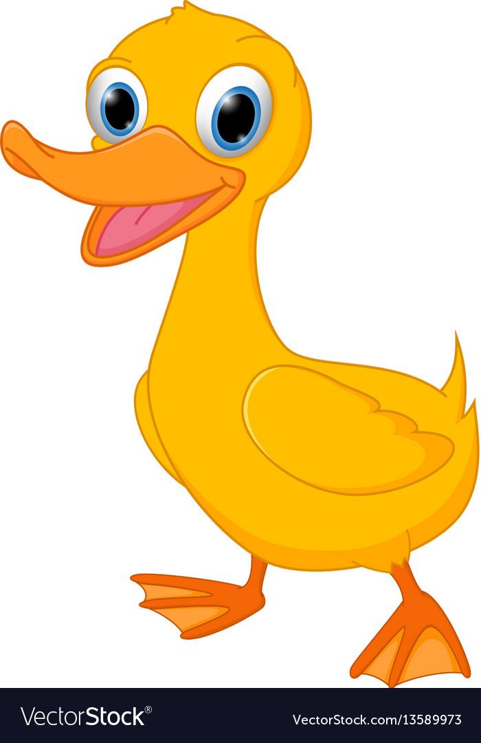 Cute duck cartoon vector image