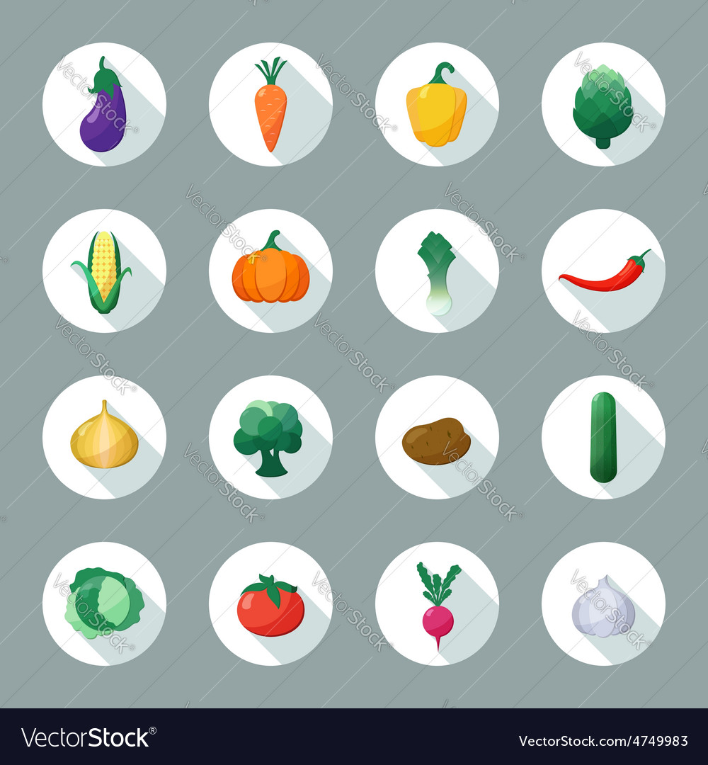 Icons Vegetables Flat Style with Long