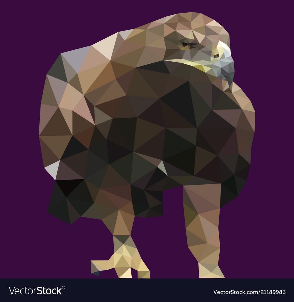Realistic background triangle polygonal eagle