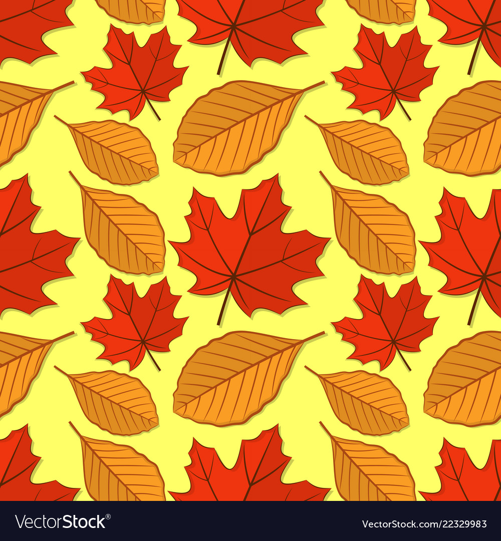 Seamless pattern with maple and beech leaves