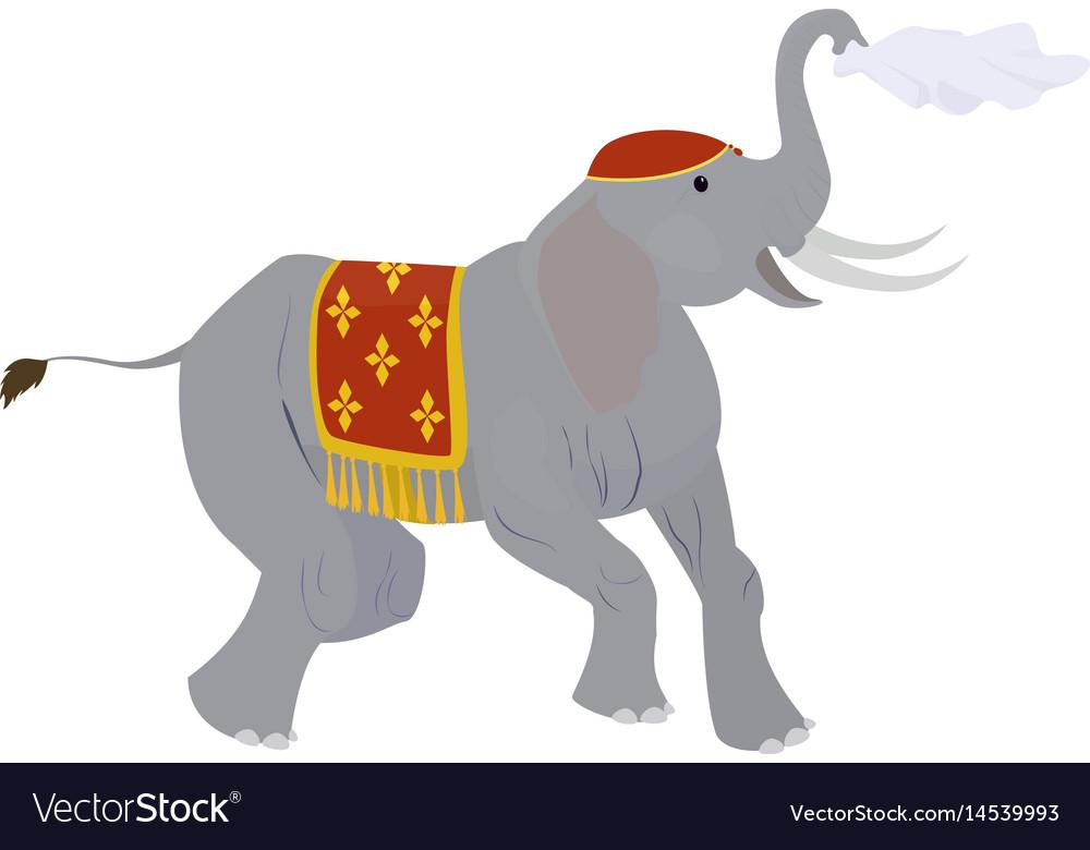 Circus elephant waving a handkerchief isolated on