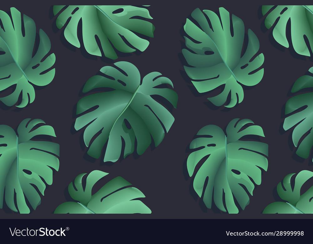 Monstera realistic leaf tropical jungle palm