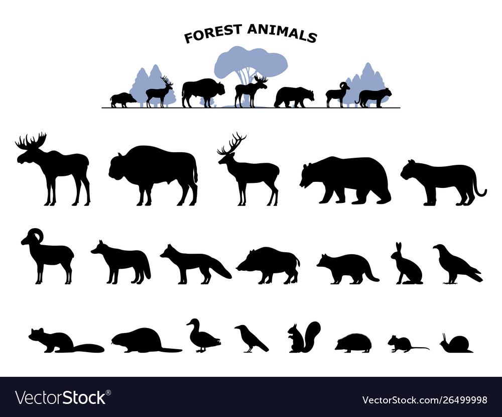 Set black silhouette wild forest steppe animals