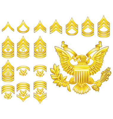 badges of rank british army. Army badges of rank in usa