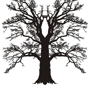 Tree Oak Silhouette Vector. Artist: ard; File type: Vector EPS
