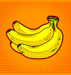 bananas fruit vector image vector image