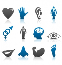 physiology icons vector image vector image