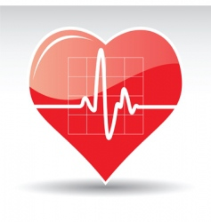 heart with cardiogram vector image