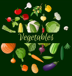 big vegetable icon set vector image