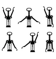 corkscrew 5 vector image