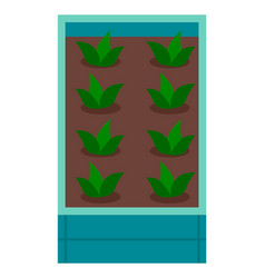 grow plant in box with soil breeding plants vector image