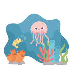 jellyfish shrimp life coral reef cartoon under the vector image