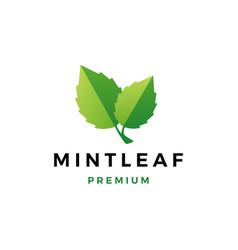Mint leaf logo icon vector