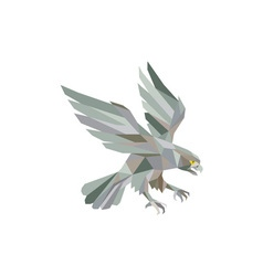 Peregrine Falcon Swooping Grey Low Polygon vector