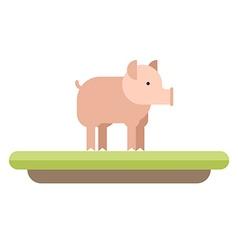 Farm animal Pig flat style vector image