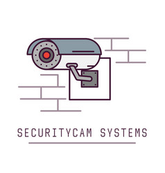 security cam system vector image