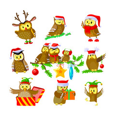 set christmas owls funny birds in santa claus vector image