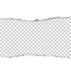 torn strip from the middle of a white sheet vector image