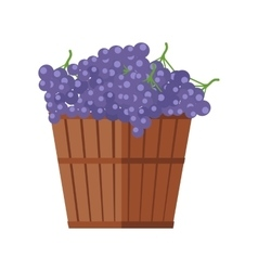 Wooden Barrel with Bunches of Red Wine Grape vector image