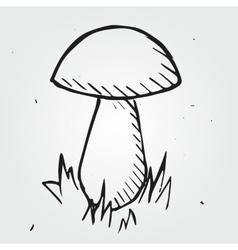mushroom isolated hand drawn vector image