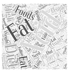 Ph miracle diet and weight loss word cloud concept vector