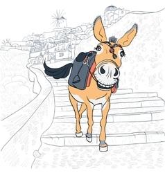 Donkey in Oia Santorini vector image