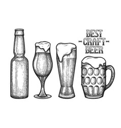 graphic glasses of beer vector image