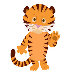 hand drawn tiger natural colors vector image