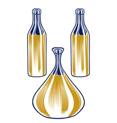 pitcher bottle set vector image