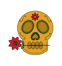 Skull with flower in the mouth the day of the vector