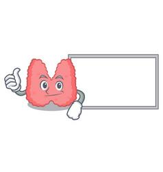 Thumbs up with board thyroid character cartoon vector