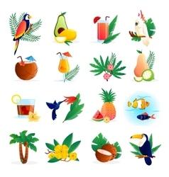 Tropical Icon Set vector image